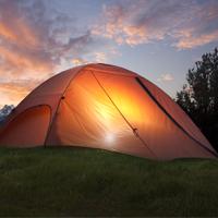 cat-thumb-camping