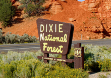 Dixie National Forest Sign