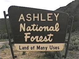 ashley national forest hiking