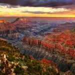 North-Rim-Grand-canyon